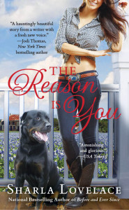 Cover_The Reason is You
