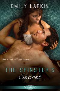17386920-the-spinster-s-secret